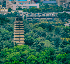 Big Wild Goose Pagoda, China